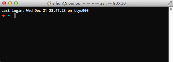 A new zsh terminal window.