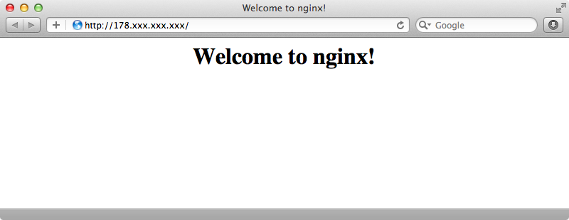 Checking that our nginx server is running.
