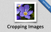 Cropping Images (revised)